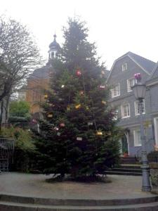 Weihnachtsbaum 2013 (Tag)